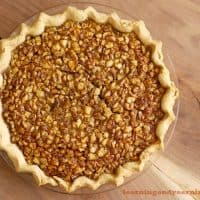 Black Walnut Pie: A Wonderful Fall Foraged Treat